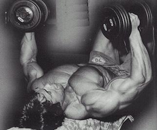 Arnold workout techniques