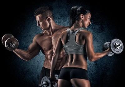 Bodybuilding Store